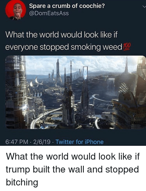 Bitching: Spare a crumb of coochie?  @DomEatsAss  What the world would look like if  everyone stopped smoking weed  100  6:47 PM 2/6/19 Twitter for iPhone What the world would look like if trump built the wall and stopped bitching