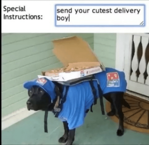 Boy, Delivery, and Cutest: Special  Instructions: boy  send your cutest delivery