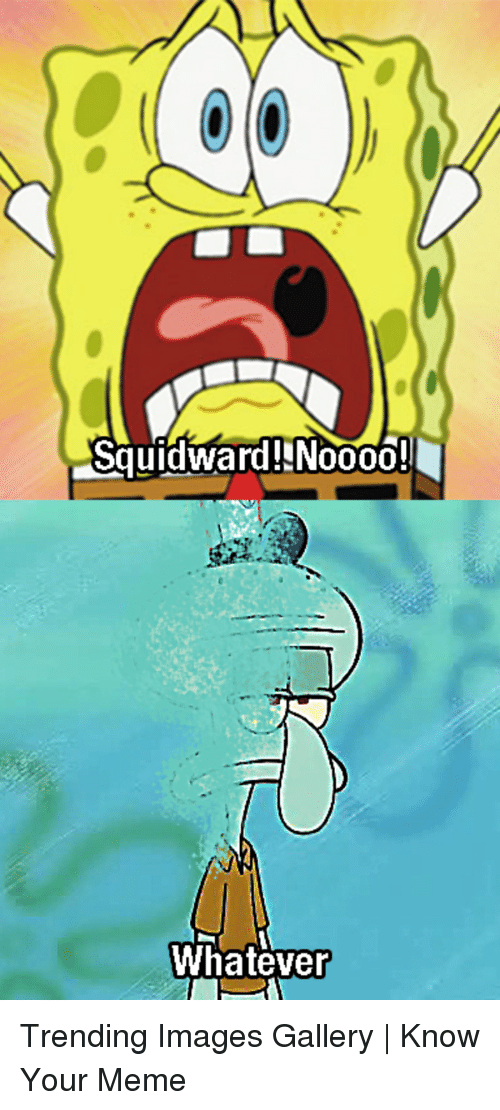 Meme, Squidward, and Images: Squidward!NN0000!  Whatever Trending Images Gallery | Know Your Meme