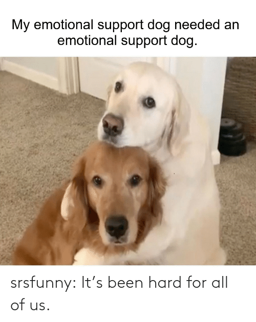hard: srsfunny:  It's been hard for all of us.