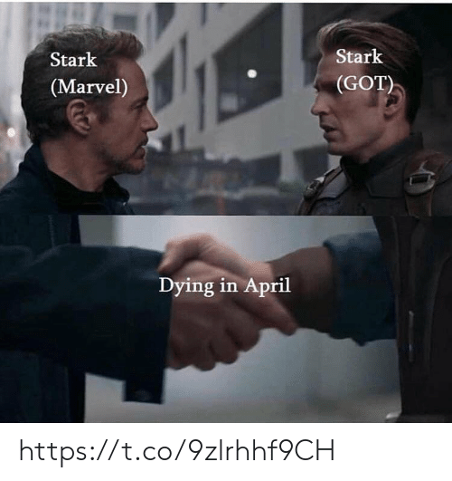Memes, Marvel, and April: Stark  (Marvel)  Stark  (GOT)  Dying in April https://t.co/9zlrhhf9CH