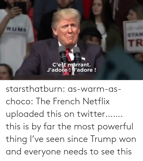Trump: starsthatburn: as-warm-as-choco:  The French Netflix uploaded this on twitter…….   this is by far the most powerful thing I've seen since Trump won and everyone needs to see this