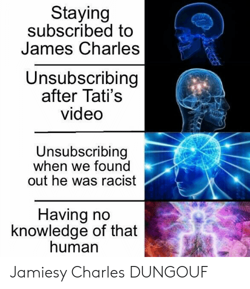 Video, Racist, and Knowledge: Staying  subscribed to  James Charles  Unsubscribing  after Tati's  video  Unsubscribing  when we found  out he was racist  Having no  knowledge of that  human Jamiesy Charles DUNGOUF