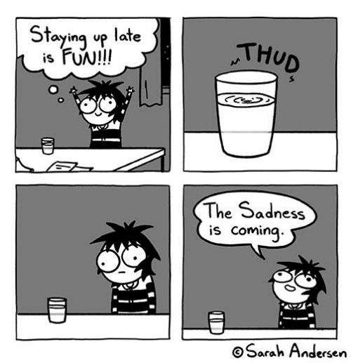 Memes, 🤖, and Fun: Stayinq up late  is FUN!I!  THUD  The Sadness  is Coming  Sarah Andersen