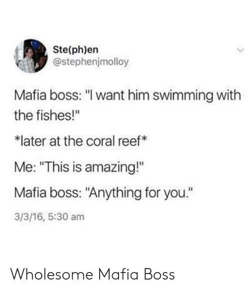 """Amazing, Wholesome, and 16.5: Ste(ph)en  @stephenjmolloy  Mafia boss: """"I want him swimming with  the fishes!""""  later at the coral reef  Me: """"This is amazing!""""  Mafia boss: """"Anything for you.""""  3/3/16, 5:30 am Wholesome Mafia Boss"""