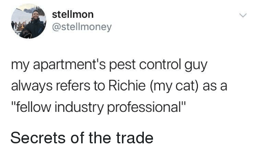 """Control, Cat, and Secrets: stellmon  @stellmoney  my apartment's pest control guy  always refers to Richie (my cat) as a  """"fellow industry professional"""" Secrets of the trade"""