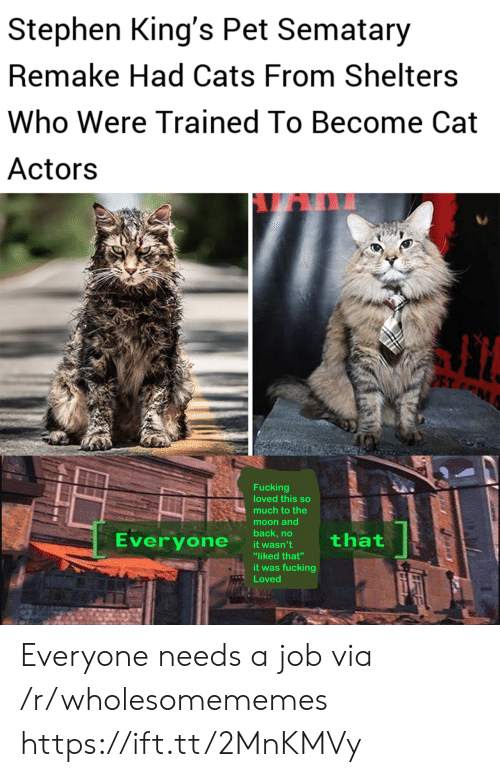 """to the moon and back: Stephen King's Pet Sematary  Remake Had Cats From Shelters  Who Were Trained To Become Cat  Actors  PET M  Fucking  loved this so  much to the  moon and  back,no  Everyone  that  it wasn't  """"liked that""""  it was fucking  Loved Everyone needs a job via /r/wholesomememes https://ift.tt/2MnKMVy"""
