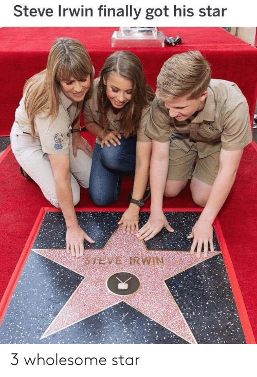Steve Irwin, Star, and Wholesome: Steve Irwin finally got his star 3 wholesome star