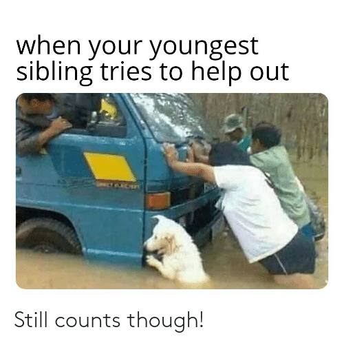 Still Counts: Still counts though!