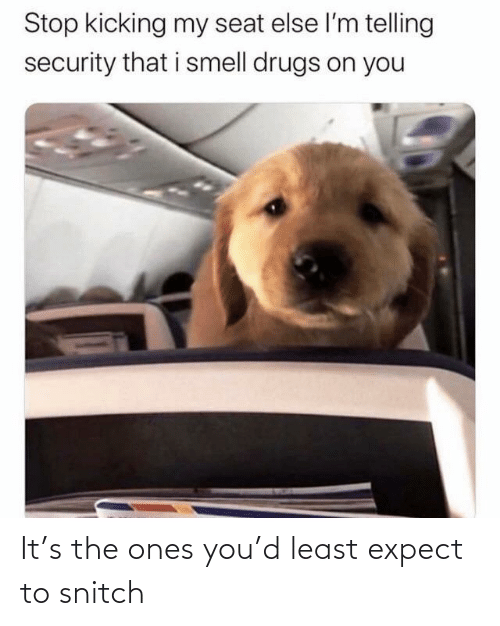 Drugs: Stop kicking my seat else l'm telling  security that i smell drugs on you It's the ones you'd least expect to snitch