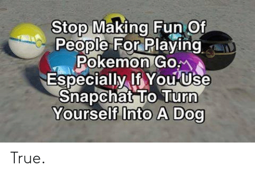Pokemon, Snapchat, and True: Stop Making Fun Of  People For Playing  Pokemon Gom  Especially If You Use  Snapchat To Turn  Yourself Into A Dog True.