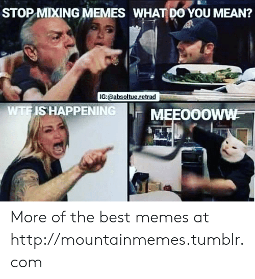 The Best Memes: STOP MIXING MEMES WHAT DO YOU MEAN?  IG:@absoltue.retrad  WTFIS HAPPENING  MEEO0OWW More of the best memes at http://mountainmemes.tumblr.com