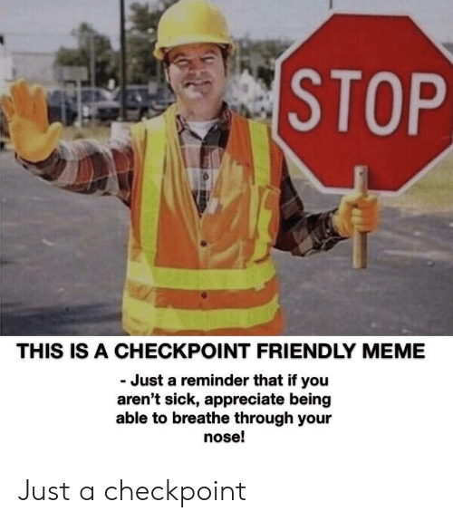just a reminder that: STOP  THIS IS A CHECKPOINT FRIENDLY MEME  Just a reminder that if you  aren't sick, appreciate being  able to breathe through your  nose! Just a checkpoint