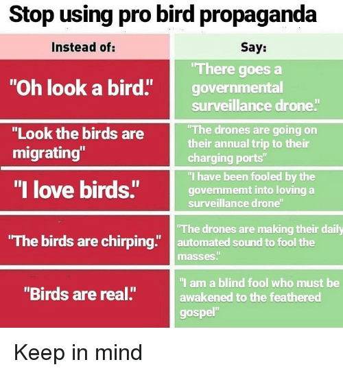 """Drone, Love, and Memes: Stop using pro bird propaganda  Instead of:  Say:  There goes a  """"Oh look a bird"""" governmental  surveillance drone  The drones are going on  their annual trip to their  charging ports""""  """"I have been fooled by the  govenmemt into loving a  surveillance drone  """"Look the birds are  migrating""""  """"I love birds""""govem  The birds are chirping"""" automated sound to fool the  The drones are making their daily  masses""""  I am a blind fool who must be  awakened to the feathered  gospel""""  """"Birds are real."""" Keep in mind"""