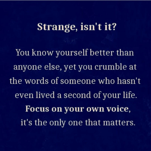 Hasnt: Strange, isn't it?  You know yourself better than  anyone else, yet you crumble at  the words of someone who hasn't  even lived a second of your life.  Focus on your own voice,  it's the only one that matters.