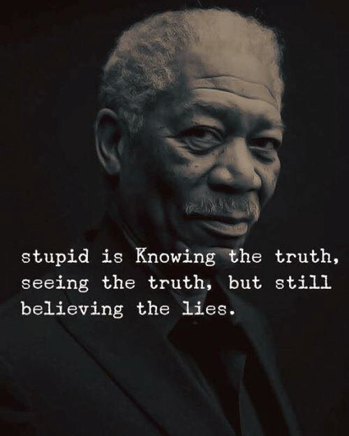 The Lies: stupid is Knowing the truth  seeing the truth, but still  believing the lies.