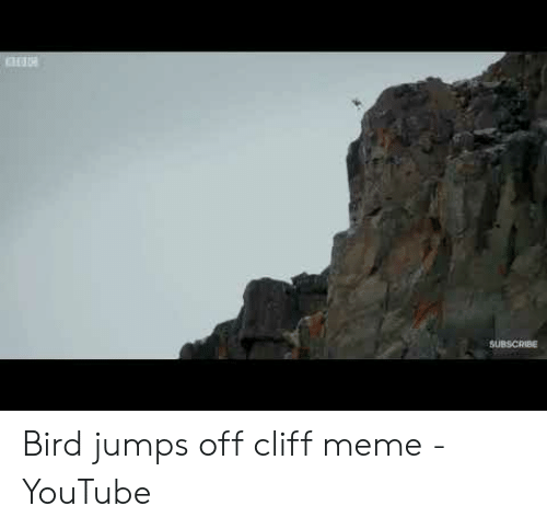 Jumping Off A Cliff Meme: SUBSCRIBE Bird jumps off cliff meme - YouTube
