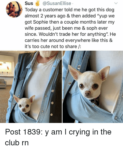 """Club, Crying, and Cute: Sus@SusanEllise  Today a customer told me he got this dog  almost 2 years ago & then added """"yup we  got Sophie then a couple months later my  wife passed, just been me & soph ever  since. Wouldn't trade her for anything"""". He  carries her around everywhere like this &  it's too cute not to share /:  1 Post 1839: y am I crying in the club rn"""
