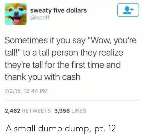 """Wow, Thank You, and Time: sweaty five dollars  @iscoff  Sometimes if you say """"Wow, you're  tall!"""" to a tall person they realize  they're tall for the first time and  thank you with cash  7/2/15, 12:44 PM  2,462 RETWEETS 3,956 LIKES A small dump dump, pt. 12"""