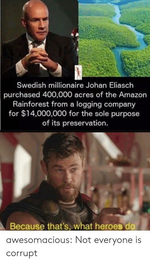 Amazon, Tumblr, and Blog: Swedish millionaire Johan Eliasch  purchased 400,000 acres of the Amazon  Rainforest from a logging company  for $14,000,000 for the sole purpose  of its preservation.  Because that's, what heroes do awesomacious:  Not everyone is corrupt