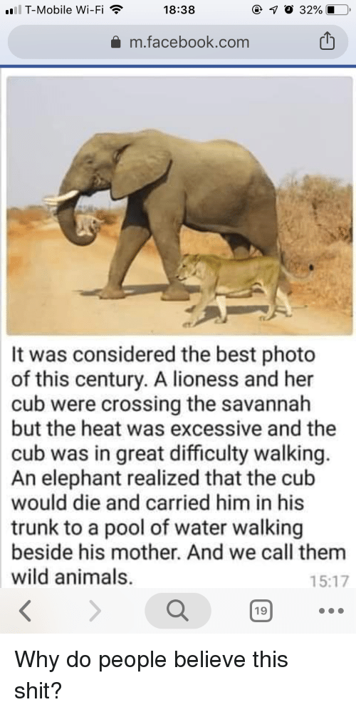 Terrible Facebook: T-Mobile Wi-Fi  18:38  m.facebook.com  It was considered the best photo  of this century. A lioness and her  cub were crossing the savannah  but the heat was excessive and the  cub was in great difficulty walking.  An elephant realized that the cub  would die and carried him in his  trunk to a pool of water walking  beside his mother. And we call them  wild animals.  15:17  19 Why do people believe this shit?