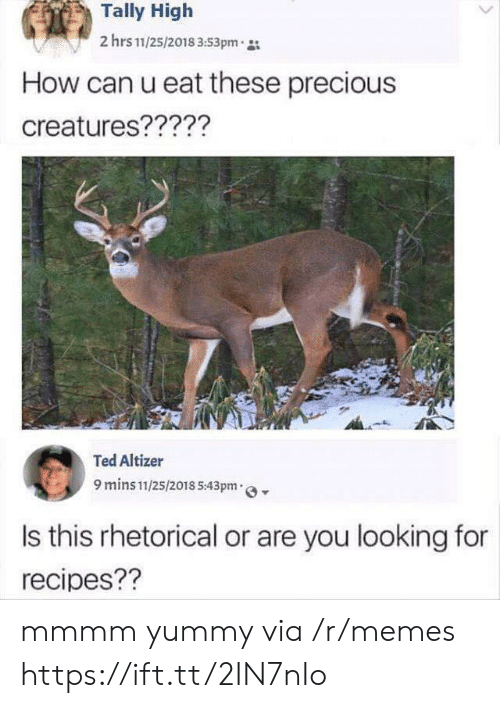 Memes, Precious, and Ted: Tally High  2 hrs 11/25/2018 3:53pm  How can u eat these precious  creatures?????  Ted Altizer  9 mins 11/25/2018 5:43pm  Is this rhetorical or are you looking for  recipes?? mmmm yummy via /r/memes https://ift.tt/2IN7nIo
