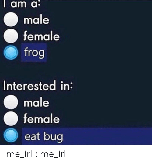 Irl, Me IRL, and Frog: Tam a:  male  female  frog  Interested in:  male  female  eat bug me_irl : me_irl