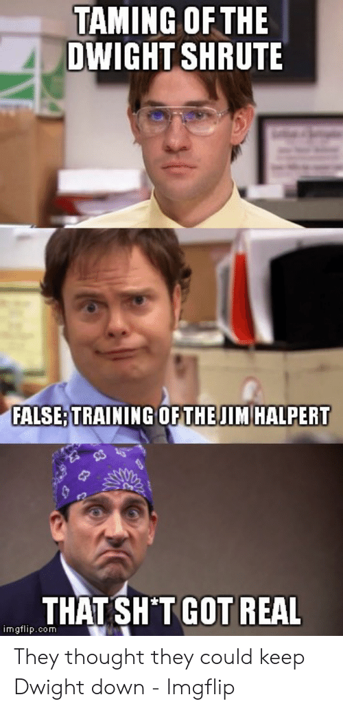 TAMING OFTHE DWIGHT SHRUTE FALSETRAINING OFTHE JIM HALPERT ...