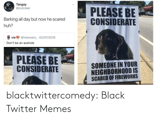 dont: Tangay  @cutclear  PLEASE BE  CONSIDERATE  Barking all day but now he scared  huh?  vie  @Vienners_· 02/07/2019  Don't be an asshole  PLEASE BE  CONSIDERATE  SOMEONE IN YOUR  NEIGHBORHOOD IS  SCARED OF FIREWORKS blacktwittercomedy:  Black Twitter Memes