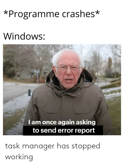 manager: task manager has stopped working