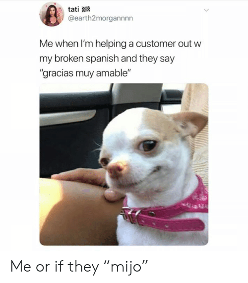 """Memes, Spanish, and 🤖: tati  @earth2morgannnn  Me when I'm helping a customer out w  my broken spanish and they say  """"gracias muy amable"""" Me or if they """"mijo"""""""
