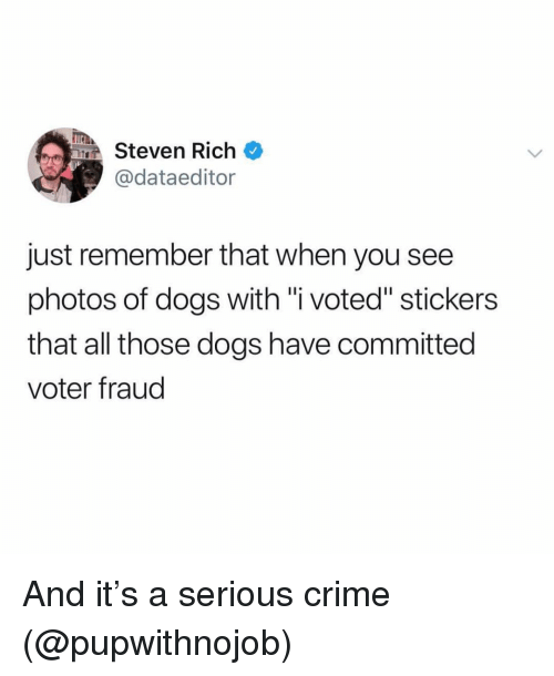 """i voted: TEA  Steven Rich  @dataeditor  just remember that when you see  photos of dogs with """"i voted"""" stickers  that all those dogs have committed  voter fraud And it's a serious crime (@pupwithnojob)"""
