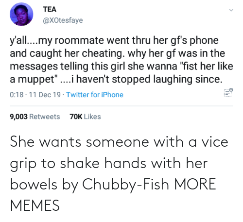 "Cheating, Dank, and Iphone: TEA  @XOtesfaye  y'all...my roommate went thru her gf's phone  and caught her cheating. why her gf was in the  messages telling this girl she wanna ""fist her like  a muppet"".i haven't stopped laughing since.  0:18 · 11 Dec 19 · Twitter for iPhone  9,003 Retweets  70K Likes She wants someone with a vice grip to shake hands with her bowels by Chubby-Fish MORE MEMES"