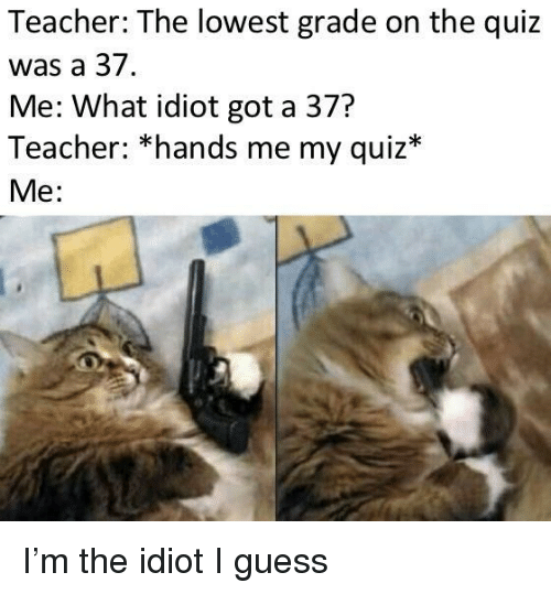 Teacher, Guess, and Quiz: Teacher: The lowest grade on the quiz  was a 37.  Me: What idiot got a 37?  Teacher: *hands me my quiz*  Me: I'm the idiot I guess