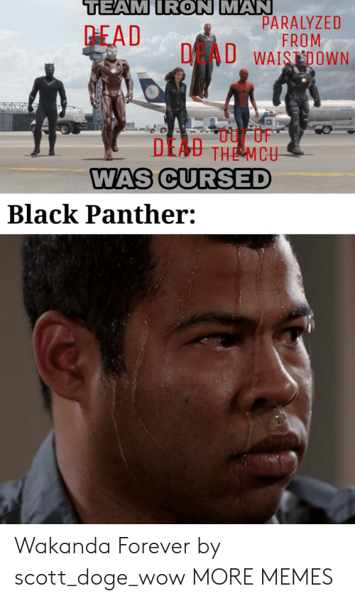 Doge: TEAM IRON MAN  PARALYZED  FROM  DAU WAISDOWN  PEAD  DEAU THE MCU  WAS CURSED  Black Panther: Wakanda Forever by scott_doge_wow MORE MEMES