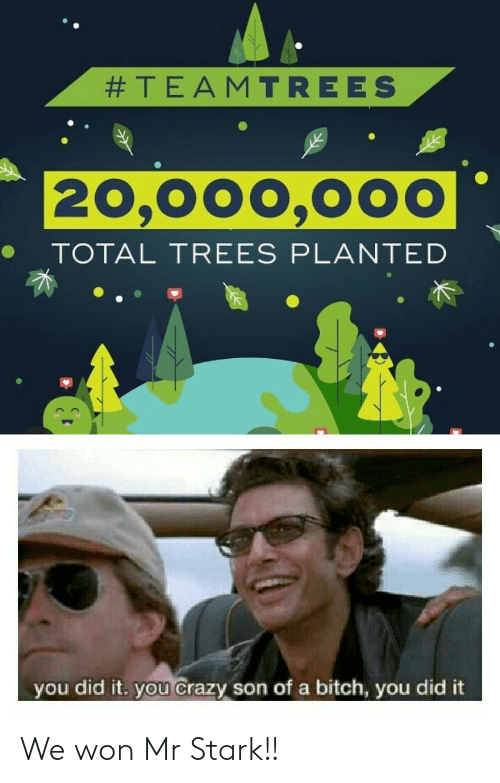 Trees:  #TEAMTREES  20,000,000  TOTAL TREES PLANTED  you did it. you crazy son of a bitch, you did it We won Mr Stark!!