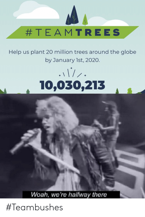 Help, Trees, and The Globe:  #TEAMTREES  Help us plant 20 million trees around the globe  by January 1st, 2020.  10,030,213  Woah, we're halfway there #Teambushes