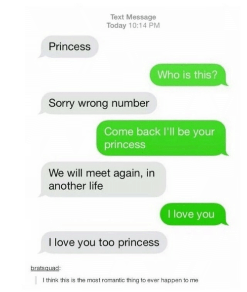 love you too: Text Message  Today 10:14 PM  Princess  Who is this?  Sorry wrong number  Come back I'll be your  princess  We will meet again, in  another life  I love you  I love you too princess  bratsquad:  I think this is the most romantic thing to ever happen to me