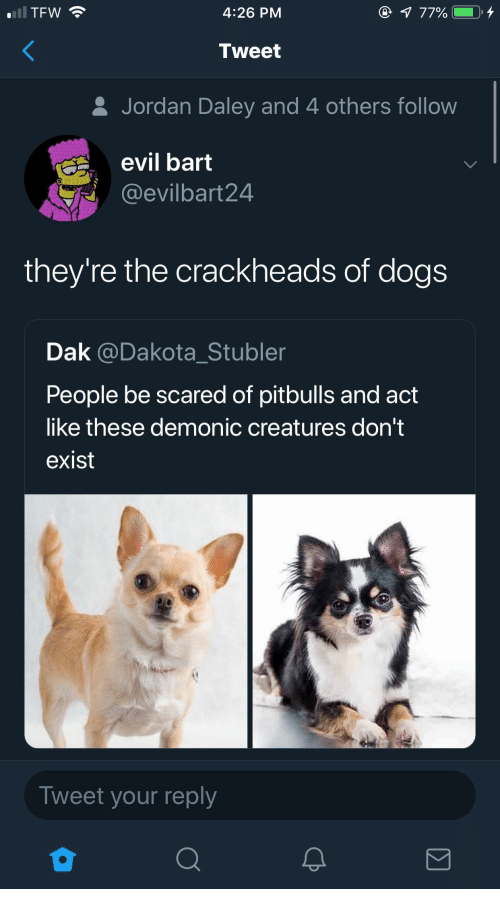 Dogs, Tfw, and Bart: TFW  4:26 PM  Tweet  & Jordan Daley and 4 others follow  evil bart  @evilbart24  they're the crackheads of dogs  Dak @Dakota_Stubler  People be scared of pitbulls and act  like these demonic creatures don't  exist  Tweet your reply