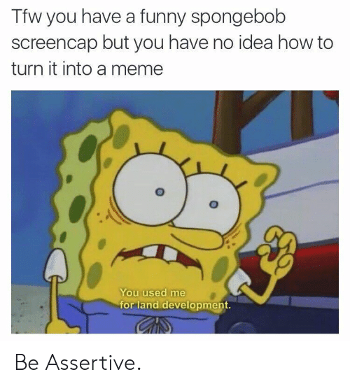 Funny, SpongeBob, and Tfw: Tfw you have a funny spongebob  screencap but you have no idea how to  turn it into a memee  You used me  for land development. Be Assertive.