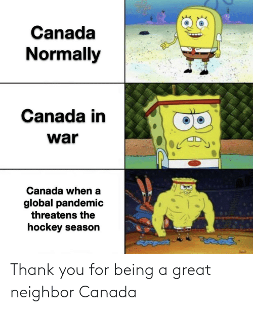 Being: Thank you for being a great neighbor Canada