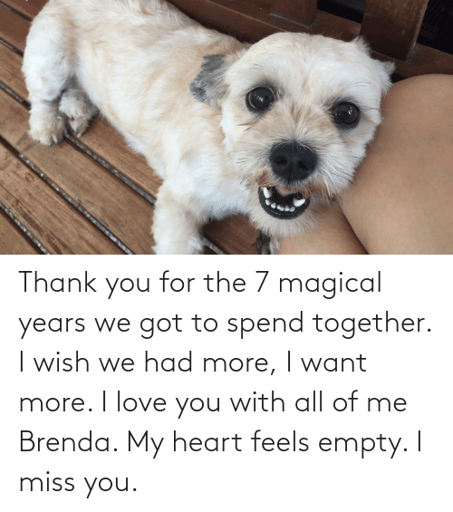 I Love You: Thank you for the 7 magical years we got to spend together. I wish we had more, I want more. I love you with all of me Brenda. My heart feels empty. I miss you.