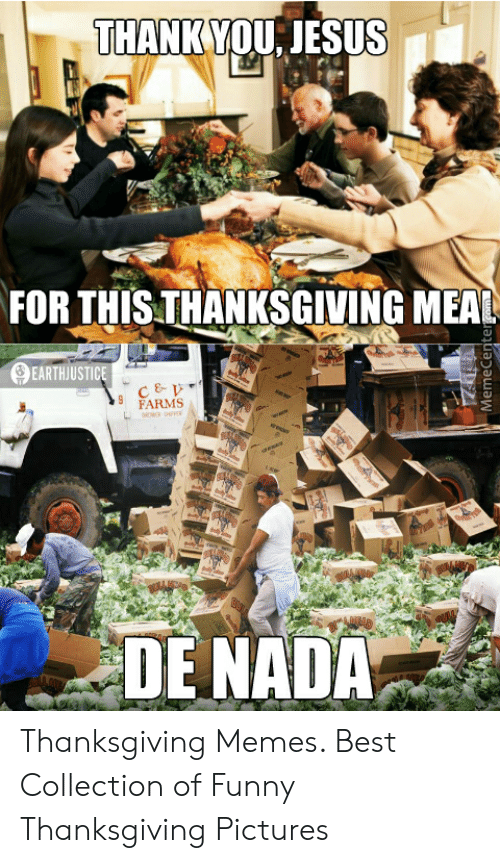 Funny, Jesus, and Memes: THANK YOU, JESUS  FOR THIS THANKSGIVING MEAL  EARTHJUSTICE  FARMS  DENADA Thanksgiving Memes. Best Collection of Funny Thanksgiving Pictures