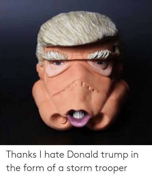 Donald Trump: Thanks I hate Donald trump in the form of a storm trooper