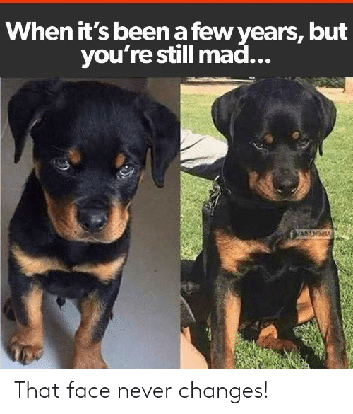 that face: That face never changes!