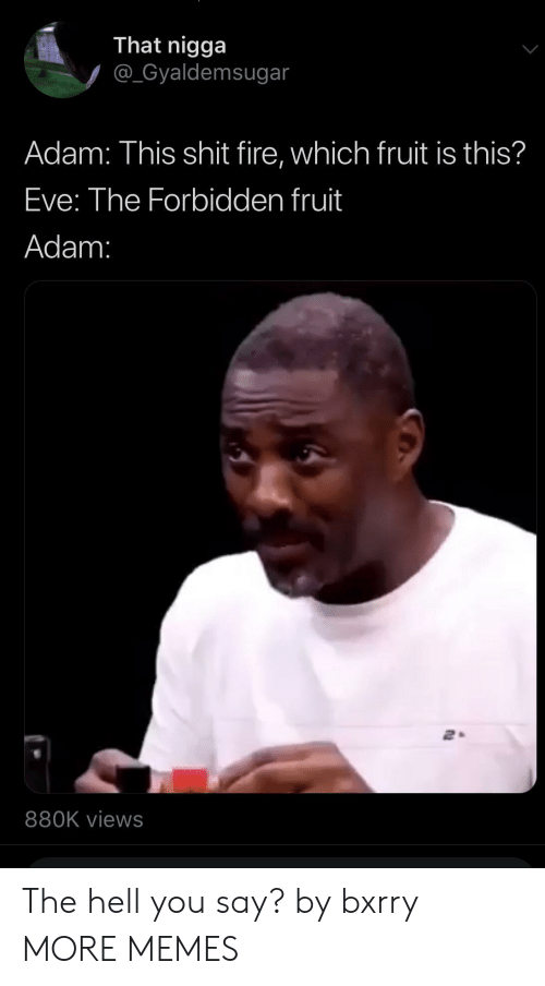 Dank, Fire, and Memes: That nigga  @_Gyaldemsugar  Adam: This shit fire, which fruit is this?  Eve: The Forbidden fruit  Adam:  880K views The hell you say? by bxrry MORE MEMES