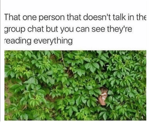Funny, Group Chat, and Chat: That  one person that doesn't talk in the  group chat but you can see they're  reading everything