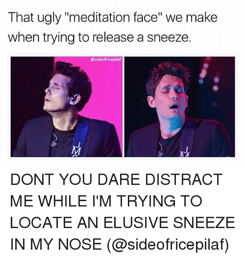 """Distracte: That ugly """"meditation face"""" we make  when trying to release a sneeze.  @sideofricepilaf DONT YOU DARE DISTRACT ME WHILE I'M TRYING TO LOCATE AN ELUSIVE SNEEZE IN MY NOSE (@sideofricepilaf)"""