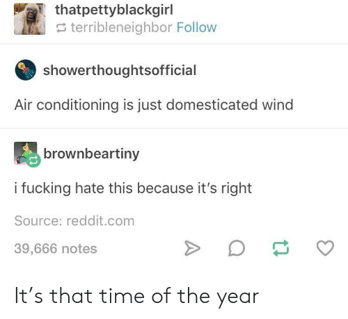 air conditioning: thatpettyblackgirl  e terribleneighbor Follow  showerthoughtsofficial  Air conditioning is just domesticated wind  brownbeartiny  i fucking hate this because it's right  Source: reddit.com  39,666 notes It's that time of the year