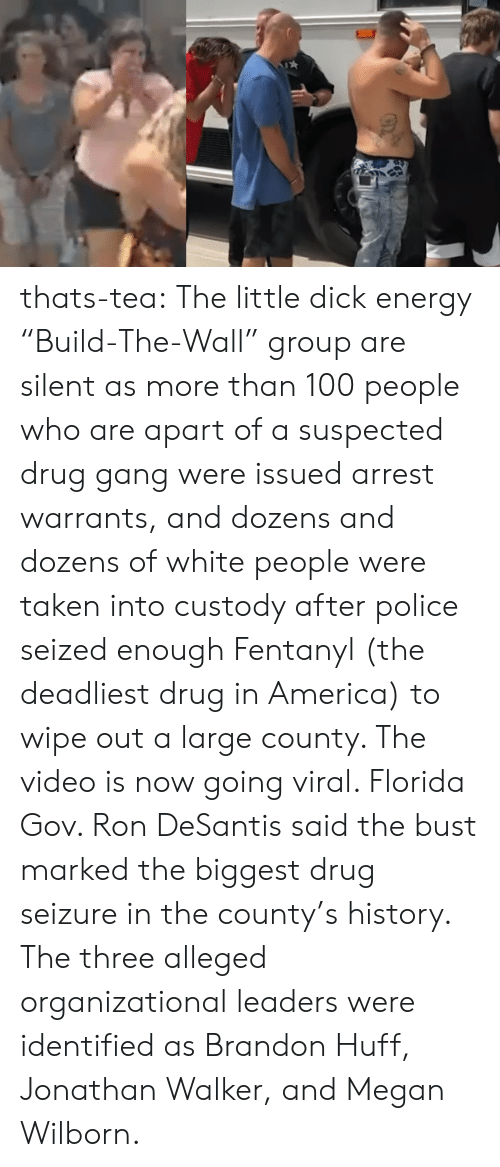 """100 People: thats-tea:    The little dick energy """"Build-The-Wall"""" group are silent as more than 100 people who are apart of a suspected drug gang were issued arrest warrants, and dozens and dozens of white people were taken into custody after police seized enough Fentanyl (the deadliest drug in America) to wipe out a large county. The video is now going viral. Florida Gov. Ron DeSantis said the bust marked the biggest drug seizure in the county's history.  The three alleged organizational leaders were identified as Brandon Huff, Jonathan Walker, and Megan Wilborn."""
